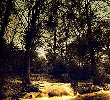 rio la silla 2 by tuetano