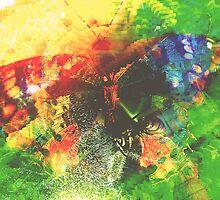 Metamorphosis by seraphimchris