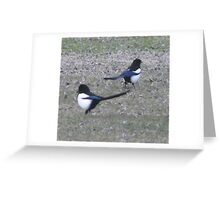 Two Magpies Greeting Card