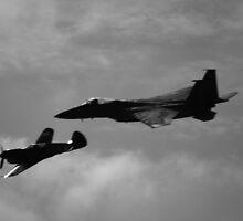 FOREVER IN THE SKY.  AIR FORCE by John Gunn
