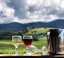 White port and red wine by andreisky