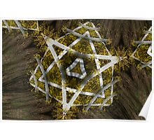 Natural Star of David Poster