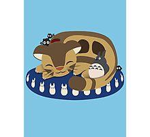 Cat Bus Snuggle Photographic Print