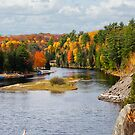 Muskoka River 2 by Gracey
