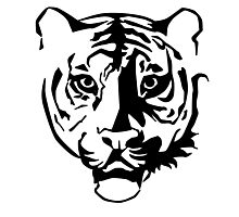 Black tiger Photographic Print