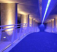 Bridge by Brian Reynolds