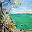 Noosa National Park by gillsart