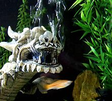 Dragon Fish by palmerley