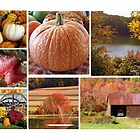 A FALL COLLAGE by tfm446