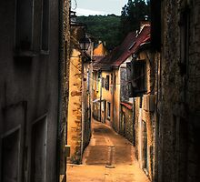 Alley in Salviac by ziko