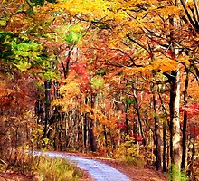 *The Forest Path* by Darlene Lankford Honeycutt