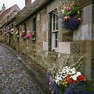 A  STREET IN FAULKLAND SCOTLAND by DIANEPEAREN