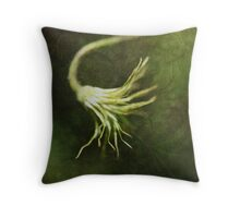 """""""Every artist dips his brush in his own soul, and paints his own nature into his pictures."""" Throw Pillow"""
