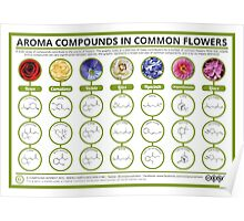 The Chemistry of Flower Aromas Poster