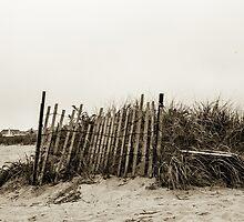 Jetties Fence  by AlesiaKaye
