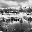 Winter Reflections by Unai Ileaña
