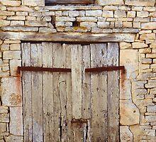 Old Doors by Pamela Jayne Smith