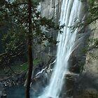 Vernal Falls by Lisa Ouillette