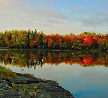 Fabulous Fall by Kathleen   Sartoris