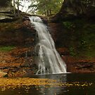 Autumn At Sullivan Falls by Molly  Kinsey
