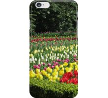 Tulips of Many Colours - Keukenhof Gardens iPhone Case/Skin