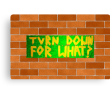 Turn Down For What? Canvas Print