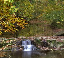 Fall Creek Gorge - Waterfall - Final Shot by Jeff VanDyke