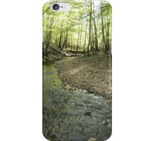 Day Streaming iPhone Case/Skin