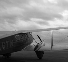De Havilland DH-89 Dragon Rapide by Mark Mitrofaniuk