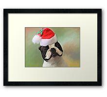Jack Christmas Framed Print