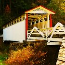 Jackson's Mill Bridge by Lois  Bryan