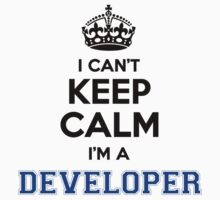 I cant keep calm Im a DEVELOPER by icanting