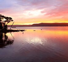 Sunset Green Point Australia by Leah-Anne Thompson