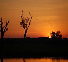 Sunset, Kakadu National Park,  Northern Territory, Australia by Adrian Paul