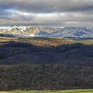 Beyond Grizedale by Jamie  Green