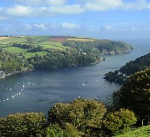 The River Dart Estuary. by rodsfotos