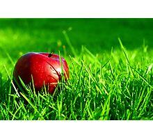 Red Apple Photographic Print