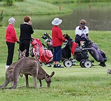 4 Over 5 Handicap! by Tainia Finlay