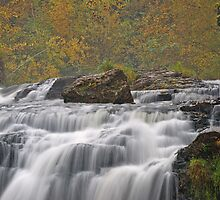 Willow River Falls by Dawne Olson