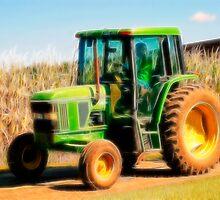 Corn Maze Series by Wendy Mogul