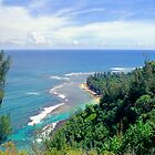 Taylor Camp Haena Kauai by kevin smith  skystudiohawaii