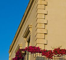 a balcony with flowers by Andrea Rapisarda