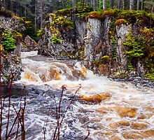 Laggan Falls by mlphoto