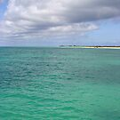 Coastal Anegada by DARRIN ALDRIDGE