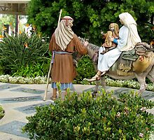 """The Holy Family.. milestones and miracles"", Crystal Cathedral, Orange County by Gili Orr"