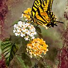 Lantana and Incoming Butterfly by Diane Schuster