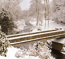 Bridge in Snow by Brian Reynolds