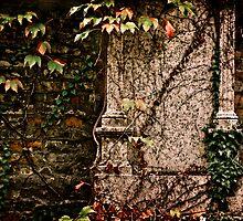 My sacred garden III. by Csaba Jekkel