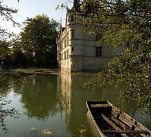 Chateau d'Azay-le-Rideau  by cpcphoto