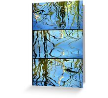 Pond Life - Triptych Greeting Card